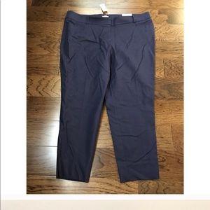 Loft Plus Marissa Skinny Blue Ankle Pants - NWT
